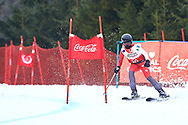 """Schladming, Austria - 2017 March 19: Alexia Barre from Canada (90) competes in Alpine Skiing Competition while Special Olympics World Winter Games Austria 2017 on the """"Sepp-Walcher-Downhill""""<br /> (Slope 32) near the """"Tauernalm"""" in Rohrmoos on March 19, 2017 in Schladming, Austria.<br /> <br /> Mandatory credit:<br /> Photo by © Adam Nurkiewicz / Mediasport<br /> <br /> Adam Nurkiewicz declares that he has no rights to the image of people at the photographs of his authorship.<br /> <br /> Picture also available in RAW (NEF) or TIFF format on special request.<br /> <br /> Any editorial, commercial or promotional use requires written permission from the author of image.<br /> <br /> Image can be used in the press when the method of use and the signature does not hurt people on the picture."""