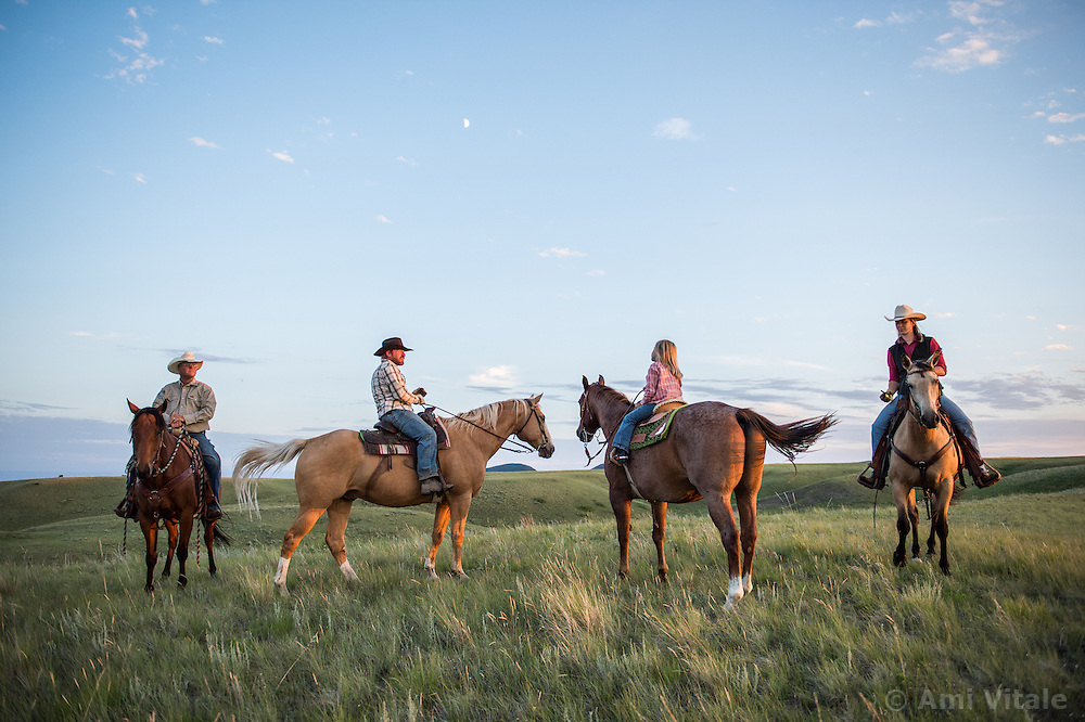 The Nature Conservancy's Matador Ranch Operations Manager Charlie Messerly, left, his daughter Layla, 5, researcher Marisa Lipsey  and TNC employee Jason Hanlon gather cows to prepare for a move as they collaborate with 13 ranching families in Eastern Montana  at the Matador ranch &quot;grass bank&quot;. The &ldquo;grass bank&quot; is an innovative way to leverage conservation gains, in which ranchers can graze their cattle at discounted rates on Conservancy land in exchange for improving conservation practices on their own &ldquo;home&rdquo; ranches. In 2002, the <br /> Conservancy began leasing parts of the ranch to neighboring ranchers who were suffering from  severe drought, offering the Matador&rsquo;s grass to neighboring ranches in exchange for their  participation in conservation efforts. The grassbank has helped keep ranchers from plowing up native grassland to farm it; helped remove obstacles to pronghorn antelope migration; improved habitat for the Greater Sage-Grouse and reduced the risk of Sage-Grouse colliding with fences; preserved prairie dog towns and prevented the spread of noxious weeds. (Photo By Ami Vitale)