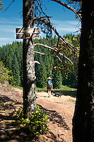 The trails at Snowden park near Campbell River are perfect for hiking and mountain biking,