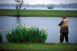 Stock photo of an older man fishing from the shore