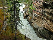 Over the millennia, the Athabasca River at Athabasca Falls has carved channels through the rock.  Some are no longer used, some are.  The colors and layering are standouts.
