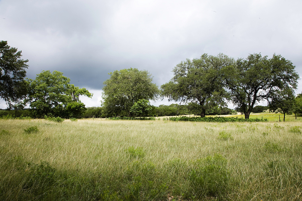 A Texas Ranch.