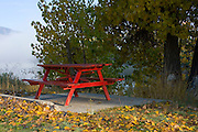 Idaho,North, Boundary County, Bonners Ferry. A red picnic table contrasts against the  vibrant colors of fallen leaves in autumn. PLEASE CONTACT US FOR DIGITAL DOWNLOAD AND PRICING.