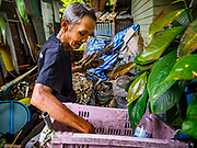 20 MAY 2017 - BANGKOK, THAILAND:  A man who will be evicted from Pom Mahakan looks for recyclables on the site of a home that was razed by Bangkok city government officials during a previous eviction in the fort. The final evictions of the remaining families in Pom Mahakan, a slum community in a 19th century fort in Bangkok, have started. City officials are moving the residents out of the fort. NGOs and historic preservation organizations protested the city's action but city officials did not relent and started evicting the remaining families in early March.       PHOTO BY JACK KURTZ