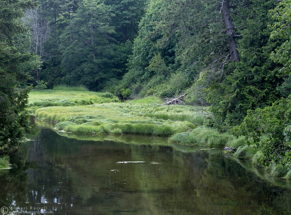 Fulford Creek at Fulford Harbour on Salt Spring Island, British Columbia, Canada.  Fulford Creek drains the Fulford Valley and the areas below Ford Lake.  Fulford Creek is also the largest fish-bearing stream in the southern Gulf Islands.
