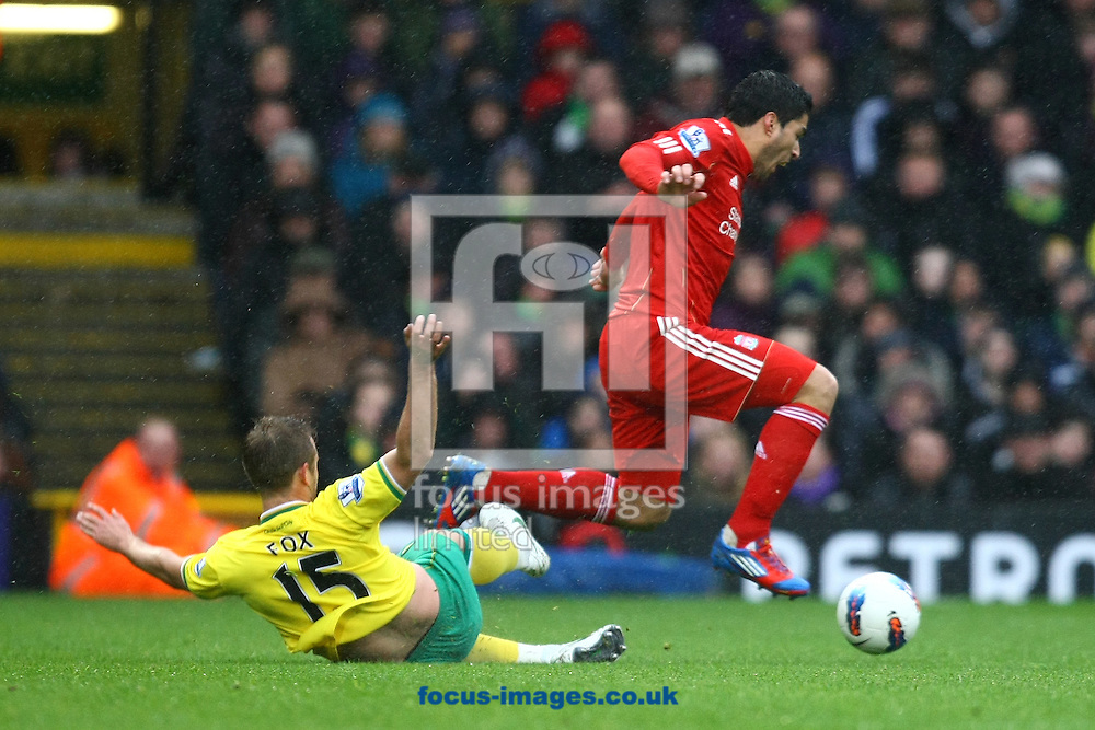 Picture by Paul Chesterton/Focus Images Ltd.  07904 640267.28/04/12.David Fox of Norwich and Luis Suárez of Liverpool in action during the Barclays Premier League match at Carrow Road Stadium, Norwich.