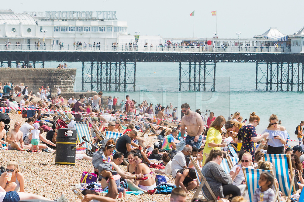 © Licensed to London News Pictures. 08/07/2017. Brighton, UK. Members of the public take advantage of the sunny weather to relax and sunbath on the beach in Brighton and Hove Photo credit: Hugo Michiels/LNP
