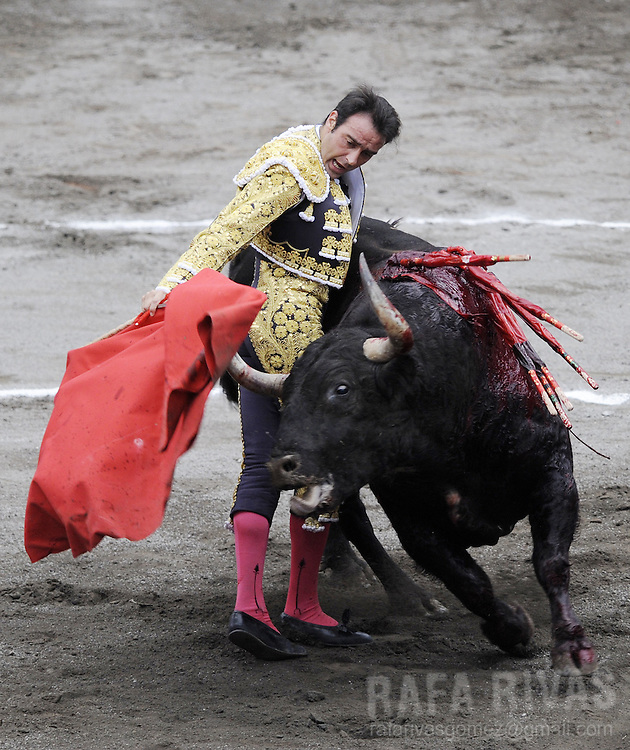 Spanish matador Enrique Ponce fights his second Ventorrillo fighting bull, during the third corrida of the Aste Nagusia festivities, on August 19, 2008, at the Vista Alegre bullring in Bilbao, northern Spain. PHOTO RAFA RIVAS