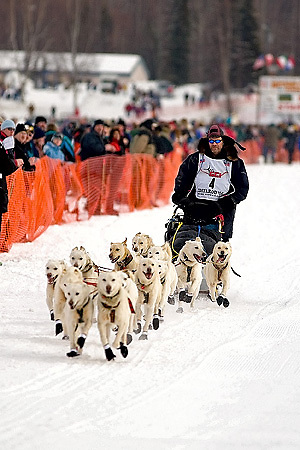 05 March 2006: Willow, Alaska - Jim Lanier of Chugiak, AK at the restart of the 2006 Iditarod on Willow Lake in Willow, Alaska