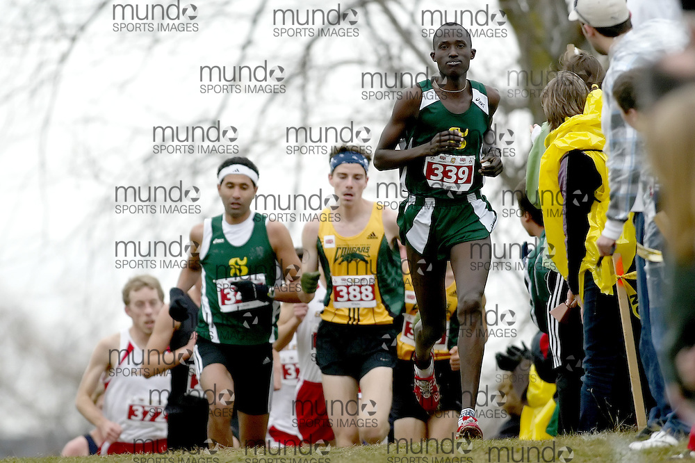 (Kingston, Ontario -- 14 Nov 2009)  FERDINAND BUZINGO of the Université de Sherbrooke leads the pack in the first lap en route to a 40th place finish at the  2009 Canadian Interuniversity Sport CIS Cross Country Championships at Forth Henry Hill in Kingston Ontario. Photograph copyright Sean Burges / Mundo Sport Images, 2009.