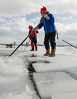 David White and Carol Poitras guide ice blocks into the channel during the Ice Harvest for Rockywald Deephaven Camps on Thursday afternoon. (Karen Bobotas/for the Laconia Daily Sun)
