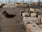 Lager fuer Steinbloecke der Prager Karlsbruecke welche wegen ihrem schlechten Zustand waehrend der Sanierung gegen neue ausgetauscht werden muessen. Das Lager befindet sich im Prager Stadtteil Kobylisy und die Steine werden vom Hund einer Sicherheitsfirma bewacht - die erste Phase der Sanierung wird bis zum Jahr 2010 dauern. Die Reparatur kostet voraussichtlich mehr als 222 Millionen Kronen kosten. <br /> <br /> Storage place for stones from Charles Bridge at the Prague quater Kobylisy - those stones had to be removed with new ones because of unrepairable damage. They are watched by a dog from a security company. The Charles Bridge renovation will be completed in June 2010 and the repairs should prevent water leakage and improve the infrastructure of the bridge and its access roads. Repair works will cost more than 222 million crowns.