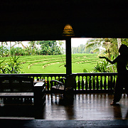 Book a stay @ www.bookgreener.com/true-luxury/bali-eco-stay/