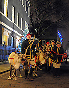 © Licensed to London News Pictures. 12/12/2011, London, UK. Reindeer on Downing Street today, Monday 12th December 2011. Photo credit : Stephen Simpson/LNP