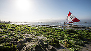 2015 Sunfish Worlds - Paracas. Peru.<br />  &copy; Matias Capizzano