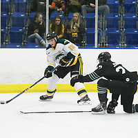 2nd year defence man Carter Hansen (15) of the Regina Cougars in action during the Men's Hockey Shine On Game on December 2 at Co-operators arena. Credit: Arthur Ward/Arthur Images