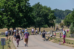 © Licensed to London News Pictures. 30/05/2020. London, UK. Members of the public go out in the sunshine in Richmond Park, South West London during lockdown as weather experts predict another warm weekend with highs of 28c. On Monday, up to six people will be allowed to meet up in parks and private gardens. Photo credit: Alex Lentati/LNP