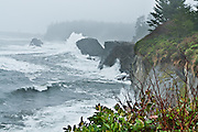Winter storm waves of the Pacific Ocean crash on cliffs at Sunset Bay State Park, Coos County, Oregon, USA.