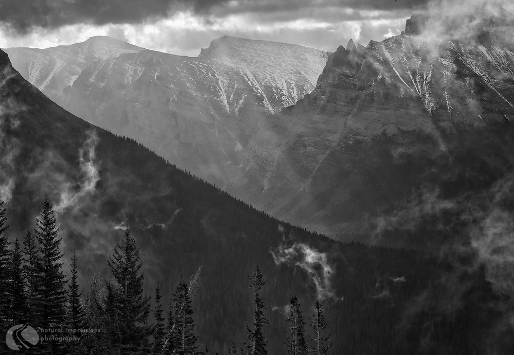 Logan Pass; Glacier National Park; black and white; abstract