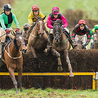 Action from the East Clare Harriers 2015 Killaloe point to point from the East Clare Harriers 2015 Killaloe point to point from the East Clare Harriers 2015 Killaloe point to point from the East Clare Harriers 2015 Killaloe point to point from the East Clare Harriers 2015 Killaloe point to point from the East Clare Harriers 2015 Killaloe point to point from the East Clare Harriers 2015 Killaloe point to point from the East Clare Harriers 2015 Killaloe point to point from the East Clare Harriers 2015 Killaloe point to point