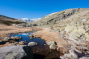 Water stream in Sierra de Gredos (Spain)