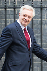 Downing Street, London, January 17th 2017. Secretary of State for Exiting the European Union David Davis leaves 10 Downing Street following the weekly cabinet meeting, ahead of Prime Minister Theresa May's key Brexit speech.