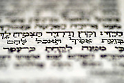 "Genesis 3 19: ""in the sweat of thy face shalt thou eat bread"" a close up of the Hebrew text in The book of Genesis chapter 3 with this one passage in focus"