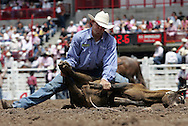 Tie-down Roper Clint Cooper scores a 15.5 in competition, 26 July 2007, Cheyenne Frontier Days