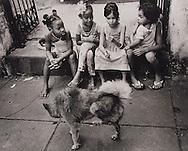 Havana Children 2