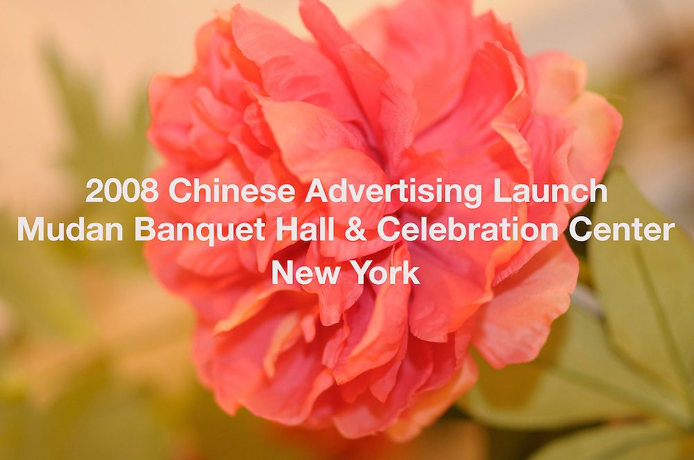 2008 Chinese Ad Launch: Mudan Banquet Hall & Celebration Center, New York on September 22rd.