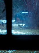 View of gargoyle from Sam Barker's bedroom window
