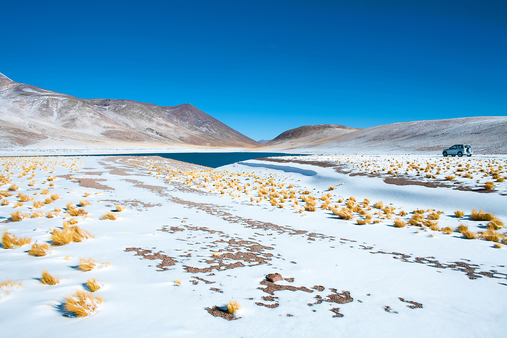 Miniques Lagoon in the Altiplano (High Andean Plateau) at an altitude of 4350m, Los Flamencos National Reserve, Atacama desert, Antofagasta Region, Chile, South America