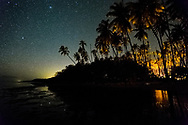 Starry night in the Kapuaiwa coconut grove, Molokai.  Over 1000 coconut trees were planted in the coconut grove by king Kamehameha in the 1800's. Today, only a few hundred palms remain, but their diminished number takes nothing away from the magic of this place.