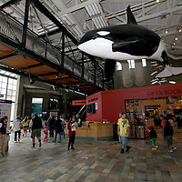 A general overview of the bookstore at the Monterey Bay Aquarium, which is located on Cannery Row in Monterey, California, on Friday July 13, 2012. (AP Photo/Alex Menendez)