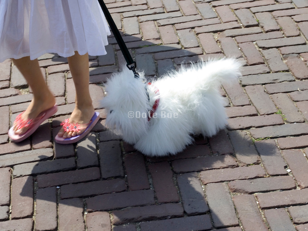 young girl walking with a lifelike dog doll on a leash