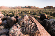 Petroglyphs on Signal Hill, Saguaro National Park (Tucson Mountain District), Tucson, Arizona USA