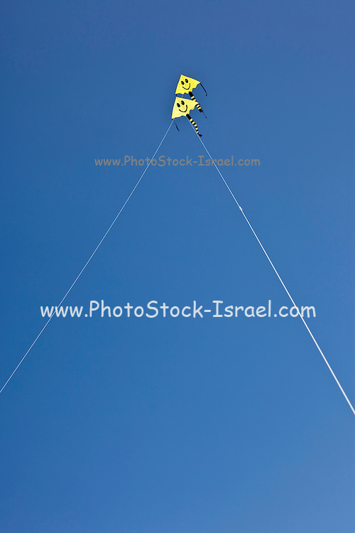 2 smiling kites flying in a blue sky