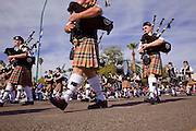 03 JANUARY 2009 -- PHOENIX, AZ: Members of the Mesa Caledonian Pipe Band during the annual Ft. McDowell Fiesta Bowl parade through Phoenix, AZ. More than 150,000 spectators line the parade routes which starts in north Phoenix and winds down Central Ave and 7th Street before ending in central Phoenix. More than 100 units march in the parade.  PHOTO BY JACK KURTZ