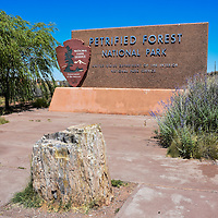Photographs within Petrified Forest National Park
