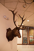 Ballard Elks Club. Main room.<br /> <br /> Matt Lutton / Boreal Collective for Buzzfeed