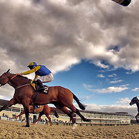 Lingfield 15th February 2013
