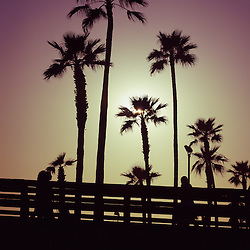 California sunset picture with palm trees. Photo was taken in Newport Beach California and has an Instagram style tone applied.