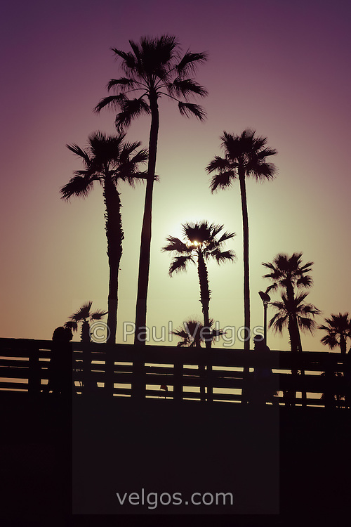 California Sunset Picture With Palm Trees Photo Was Taken In Newport Beach And Has