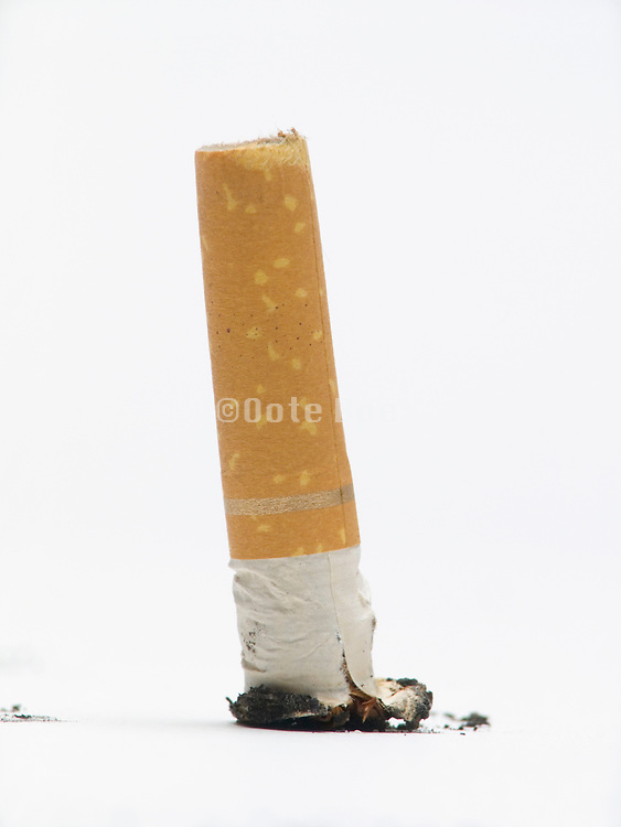 stubbed out cigarette butt