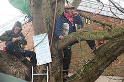 © Licensed to London News Pictures. 29/11/2018. Tonbridge, UK. Tea and biscuits for protesters. Local resident protesters in Tonbridge, Kent have been sitting up a tree for a week to stop it being chopped down to make way for a new medical Centre in River Lawn Road. Developers say the horse chestnut tree is dying anyway but the local group want it saved.Photo credit: Grant Falvey/LNP