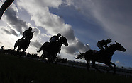 Punchestown Races 071214
