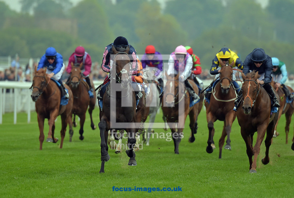 Castle Harbour ridden by Frankie Dettori (dark blue with pink stripe sleeves) wins Conundrum HR Consulting Stakes during the Dante Festival 2016 at York Racecourse, York.<br /> Picture by Martin Lynch/Focus Images Ltd 07501333150<br /> 11/05/2016