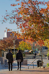United States, Washington, Bellevue, people walking in plaza with fall foliage