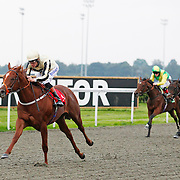 Kempton 1st October 2013