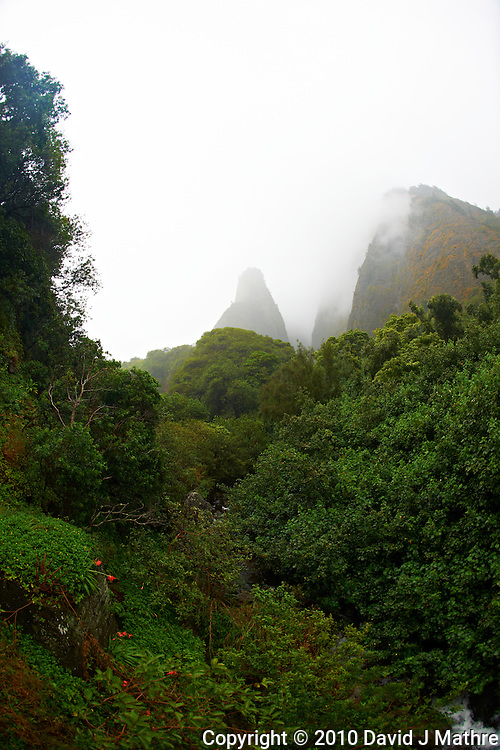Iao Needle in the Mist. Iao Valley State Park, Maui Hawaii. Image taken with a Nikon D3x and 16 mm fisheye  lens (ISO 100, f/5, 1/100 sec)